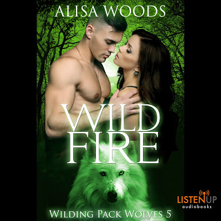 Wild Fire: Audiobook